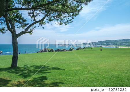 天然芝の種差海岸 - 青森県八戸市 20785282