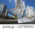 帆船日本丸の総帆展帆・満船飾 20799932
