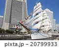 帆船日本丸の総帆展帆・満船飾 20799933