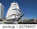 帆船日本丸の総帆展帆・満船飾 20799937