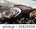 海産物の炭火焼 20829308