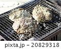 海産物の炭火焼 20829318