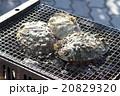 海産物の炭火焼 20829320