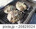 海産物の炭火焼 20829324