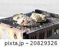 海産物の炭火焼 20829326