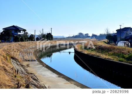 高橋川(霞ヶ浦) 20829396