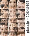 目 目元 バリエーションの写真 20848495
