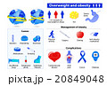 Obesity and overweight infographic 20849048