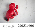 ボクシンググローブ 20851490