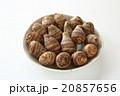海老芋 唐芋 京芋の写真 20857656
