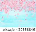 花吹雪 桜吹雪 サクラ さくら 水彩 花びら ハート形 模様 風景 お花見日和 青空 4月 春 背景 20858846