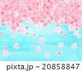 花吹雪 桜吹雪 サクラ さくら 水彩 花びら ハート形 模様 風景 お花見日和 青空 4月 春 背景 20858847