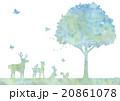 木と動物のイラスト 20861078