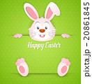 EASTER イースター 復活祭のイラスト 20861845
