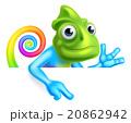 Rainbow Cartoon Chameleon Pointing 20862942