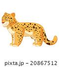 Cartoon smiling  Leopard 20867512