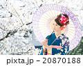 桜 着物 和服の写真 20870188