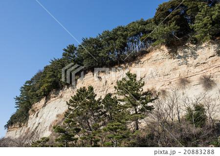 三渓園の断層 20883288