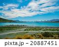 テカポ湖 20887451