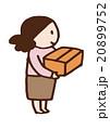 女性 ダンボール 片付けのイラスト 20899752