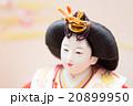 美しい雛人形 20899950