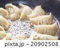 餃子 焼き餃子 20902508