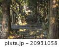 両子寺 仁王像 石段の写真 20931058