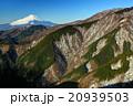 丹沢・表尾根から富士山と大倉尾根 20939503