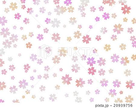 桜 20939756