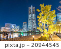 【横浜】みなとみらい・夜景 20944545