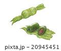 食べ物 スイーツ 笹団子のイラスト 20945451