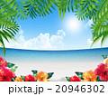 リゾート地 20946302