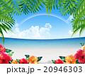 リゾート地 20946303