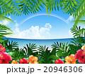 リゾート地 20946306