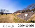 多摩川 河川敷 遊歩道の写真 20948469