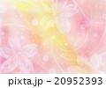 桜の花びら イラスト 20952393