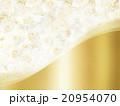フレーム 花 薔薇のイラスト 20954070