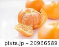 みかん 果物 フルーツの写真 20966589