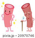 血管年齢 医療 健康 20970746