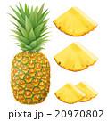 パイナップル 20970802