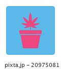 Marijuana Pot Rounded Square Button 20975081