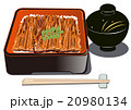 鰻重 和食 土用の丑の日のイラスト 20980134