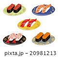寿司 生寿司 セットのイラスト 20981213