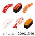 寿司 生寿司 握りのイラスト 20981349