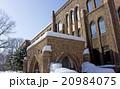 北海道大学、北大、北海道大学総合博物館、冬 20984075