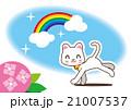 紫陽花 雨上がり 虹のイラスト 21007537