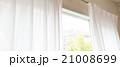 窓 窓辺 窓際の写真 21008699