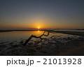 景色 モーニング 朝の写真 21013928