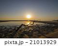景色 モーニング 朝の写真 21013929