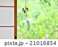 風鈴 夏イメージ 風の写真 21016854
